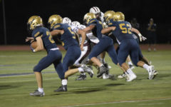 Like Champion Fathers Like Champion Sons