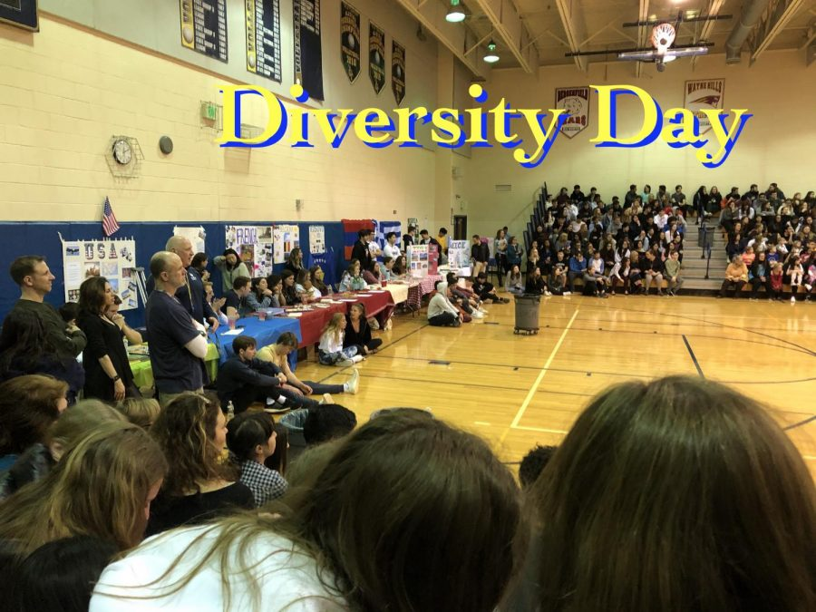 View from the stands on Diversity Day.