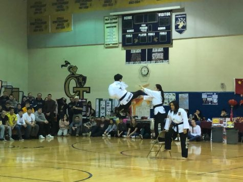 High kick during tae kwon do demonstration.