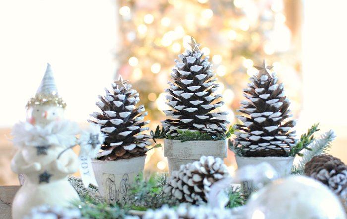 pine+cone+5